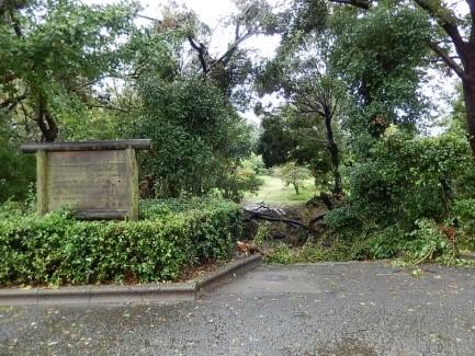 実習庭園入口