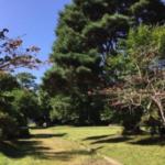 実習庭園植樹奉仕の開催(参加者募集) 主催:大園同窓会